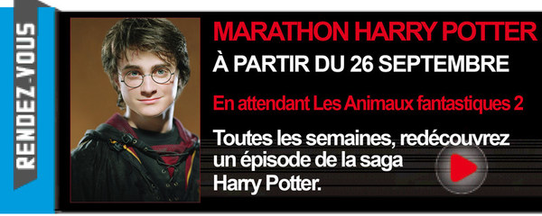 MARATHON HARRY POTTER